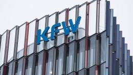Brüssel akzeptiert 100-Prozent-Staatshaftung für Kleinkredite