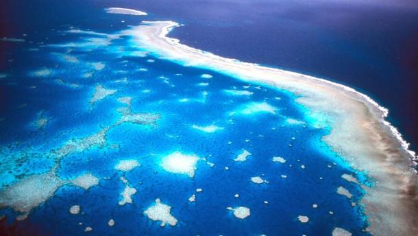 Australien plant Megahafen am Great Barrier Reef