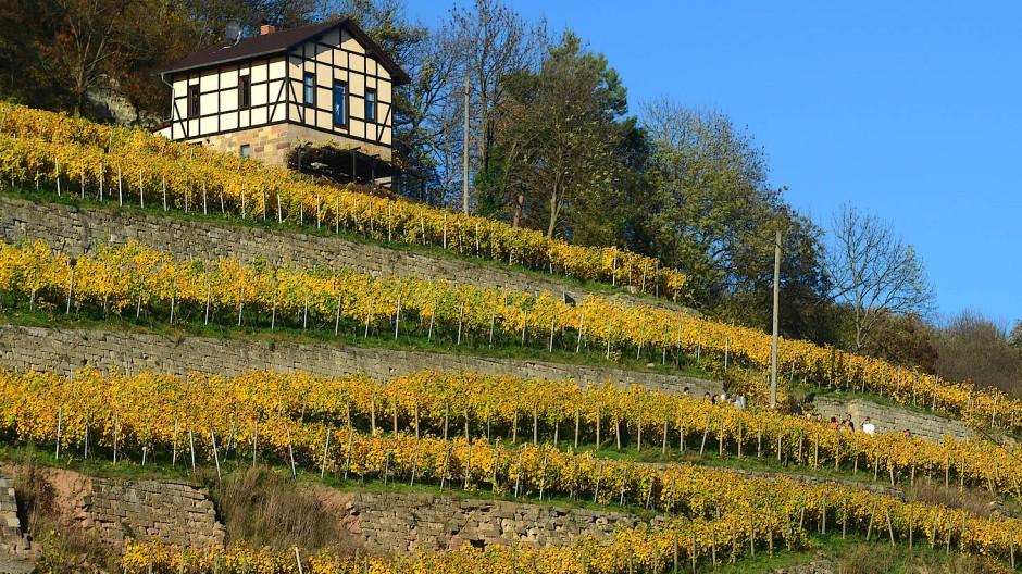 Nicht nur impftouristisch, sondern auch landschaftlich interessant: der Burgenlandkreis.