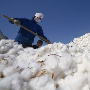 Arbeiter auf einem Berg von Baumwolle an einem Umschlagplatz in China