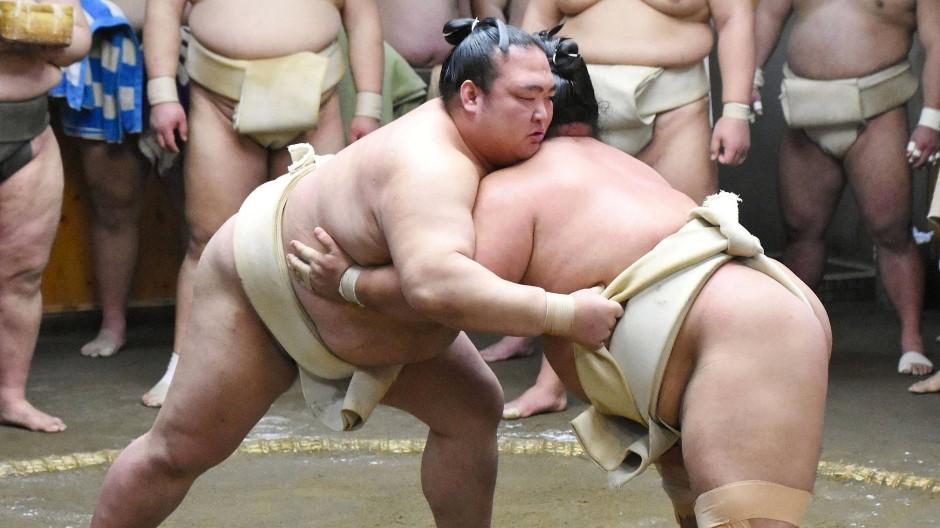 Großmeister Kisenosato (l) ringt während eines Sumo-Trainings mit Kotoshogiku.