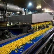 Kartoffeln werden in einer Fabrik zu Pommes frites verarbeitet.