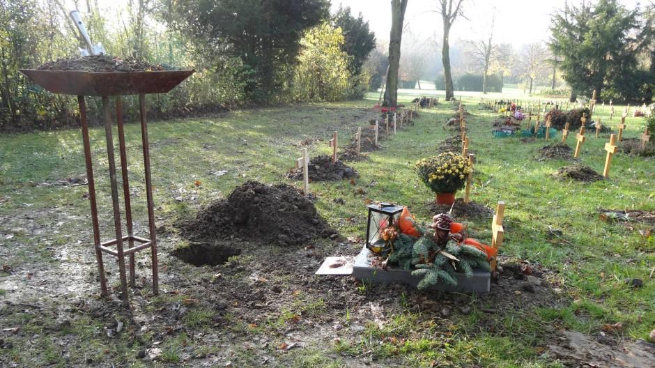 In langer Reihe und bald vergessen: Urnengräber in Frankfurt