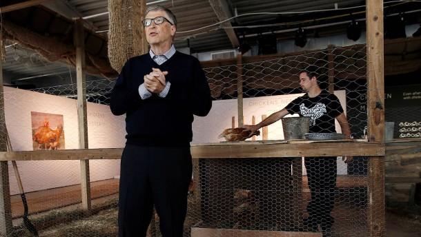 Bolivien will keine Hühner-Spende von Bill Gates