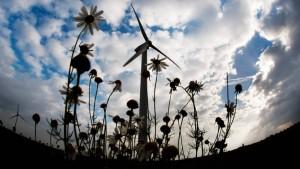 EU siegt im Streit um Ökostromreform