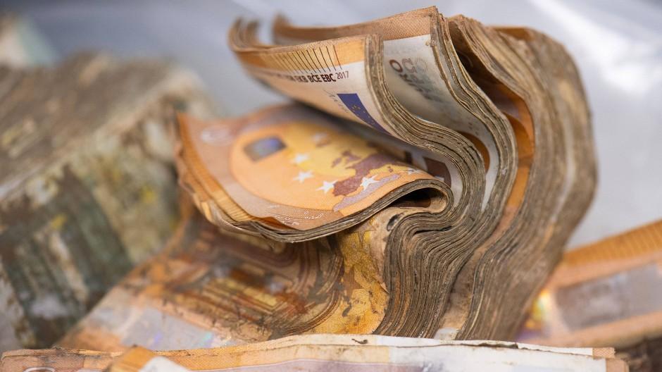 Verschmutzt, verschimmelt und durchweicht: Euro-Banknoten nach der Flutkatastrophe