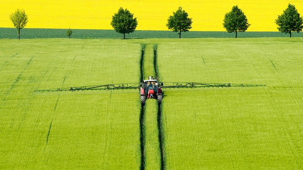 Große Sorge ums Essen: Die Landwirtschaft nach einem Systemwechsel
