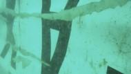 Heck der AirAsia-Maschine im Meer gefunden