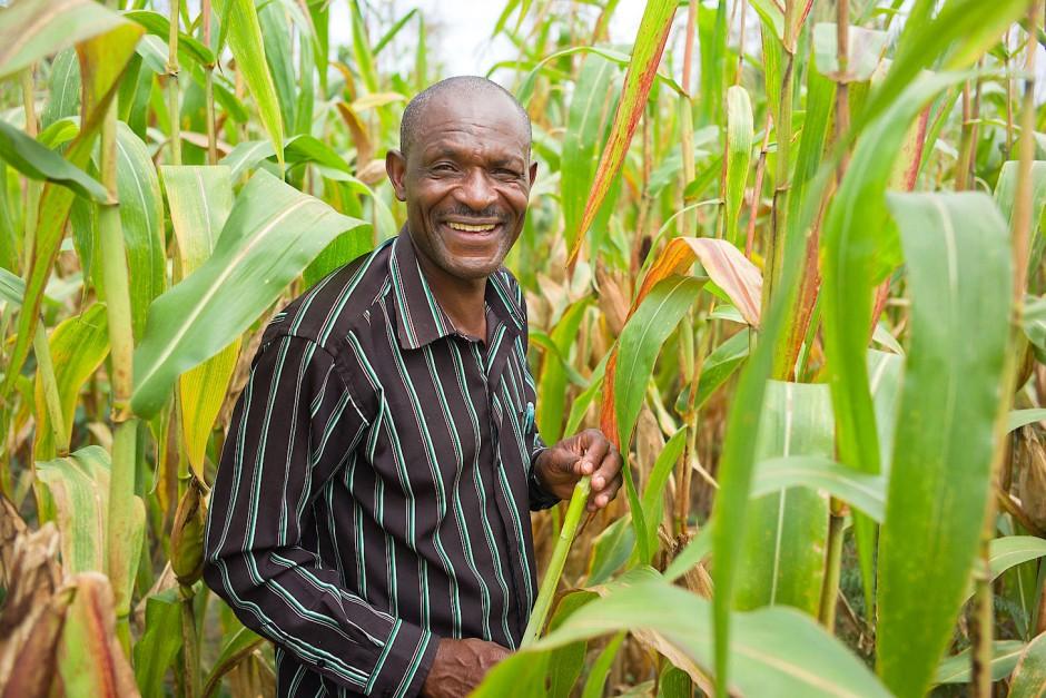 Nutzt kein Urin für die Düngung seiner Maisfelder: Kleinbauer Felx Kangwa in Nkolemfumu, nördliches Sambia.