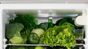 Die Geschichte vom grünen Kühlschrank