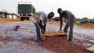 Kakao aus der Elfenbeinküste ist auch in Deutschland beliebt.