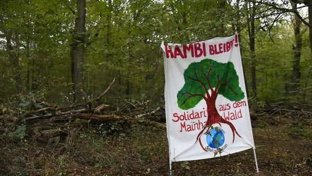 RWE will auf Kaufangebot für Hambacher Forst nicht antworten