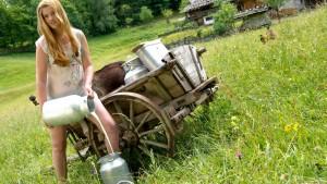 """Schäuble wirft Ifo-Chef """"Milchmädchenrechnungen"""" vor"""