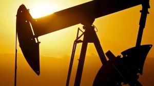 Russlands Energieminister widerspricht Putin
