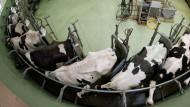 Milchgipfel ohne Milchbauern