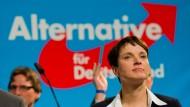 Für die Wirtschaft fehlt es Frauke Petry und der Alternative für Deutschland nicht an Ideen.
