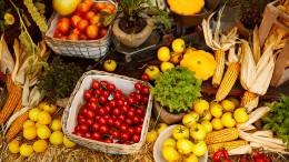 Welche Lebensmittel teuer werden – und welche nicht