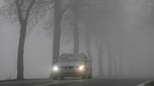 Versicherung muss trotz Fahrerflucht zahlen