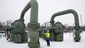 Firmen-Verkauf an russischen Milliardär besorgt Politiker