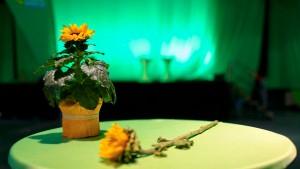 Ein Blumenfreund für die Führung der Grünen