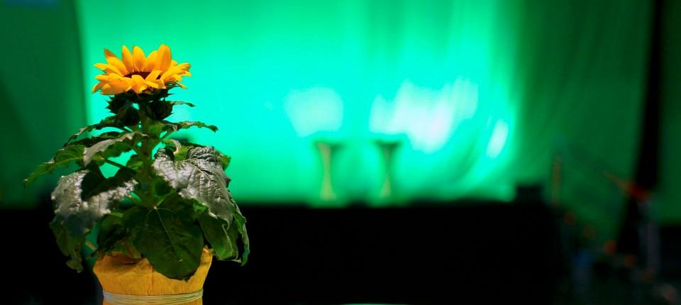 Anton Hofreiter Ein Blumenfreund Fur Die Fuhrung Der Grunen