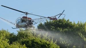 Hubschrauber gegen Maikäfer