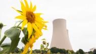 Blühende Landschaften: Wird die Atomkraft wieder auferstehen?.