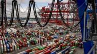 Unzählige Container werden jeden Tag im Hamburger Hafen verladen.