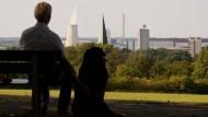 Wolfsburg erhöht Hundesteuer