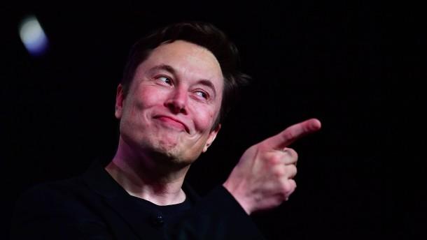 Fiat und GM kaufen bei Tesla ein