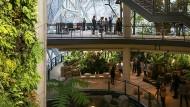 Grüne Bürowelten bei Amazon