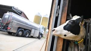 Angst vor der nächsten Milchkrise