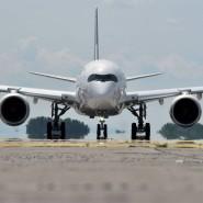 Erst testen, dann starten: So sieht es ein Plan der Lufthansa vor.