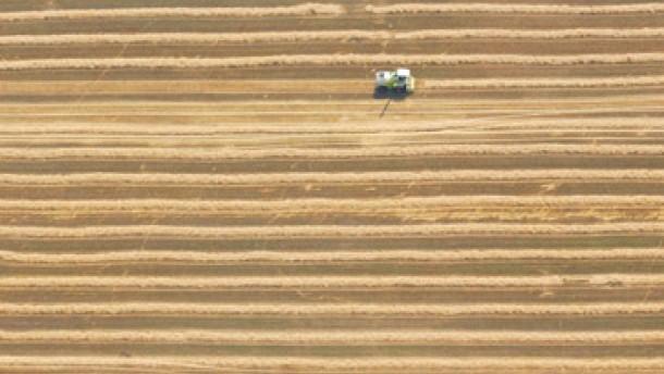 WTO verpaßt Chance zur Öffnung des Agrarmarkts