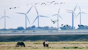Union und SPD einigen sich auf Energiewende-Reformpaket