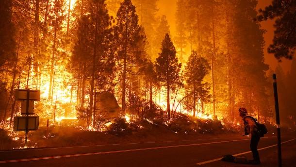 Naturkatastrophen verursachen Schäden in Höhe von 210 Milliarden Dollar