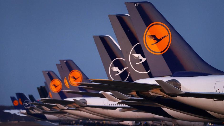 Am Boden: Geparkte Lufthansa-Maschinen am Frankfurter Flughafen