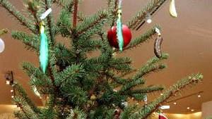 Web-Weihnachten: Süßer die Kassen nie klingeln