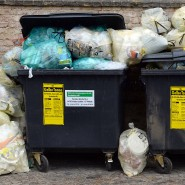 Für die Tonne: Wohin der Plastikmüll gehört, weiß fast jeder. Doch was geschieht damit nach der Abholung?