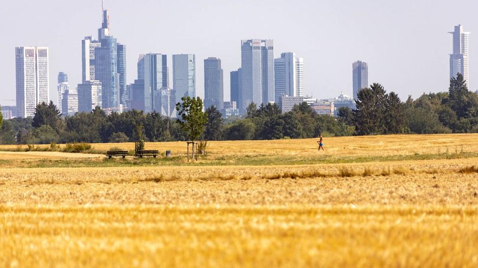 Heiße Tage in Frankfurt: Der Klimawandel beschäftigt auch die Finanzbranche.