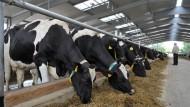 Viele Milchbauern haben wegen der niedrigen Preise existentielle Probleme.