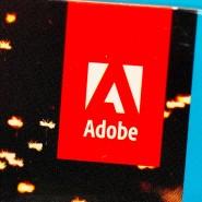 Adobe entwickelt demnächst seine Flash-Plattform nicht weiter.