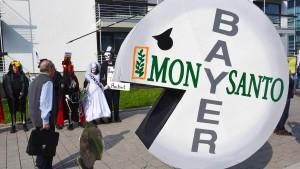 Bayer-Aktienkurs fällt weitere 6 Prozent