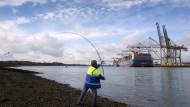 Reeder und Banken verramschen die deutsche Handelsflotte