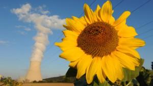 Die Widersprüche der Energiewende