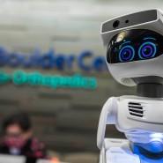 Ein Roboter namens Misty. Er ist programmierbar und für den Hausgebrauch geeignet.