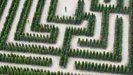 Flucht nach vorn: Neue Herausforderungen kann man nicht nach bewährtem Muster angehen.