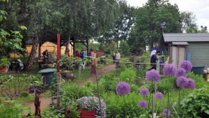 Des Großstadtmenschen Garten