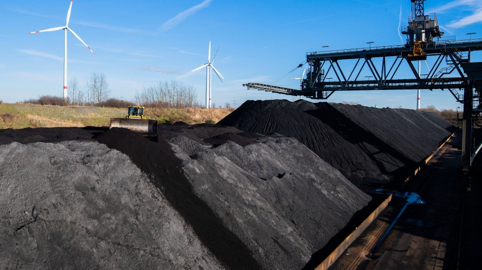 Steinkohle lagert im Kohlehafen vom Kohlekraftwerk Mehrum im Landkreis Peine.