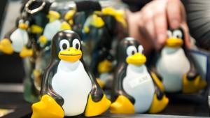 Microsoft öffnet sich für Linux
